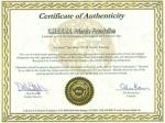 medium_certificate.jpg