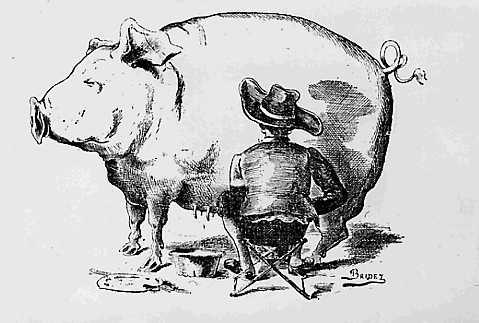 Porc_trait-par-Van-Dyck-Bridet.jpg