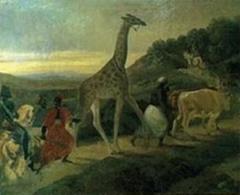 voyage girafe.jpg