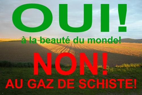 NON-au-gaz-de-schiste-08-A03.jpg
