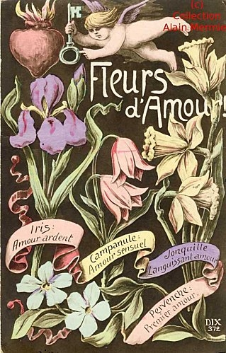 Langage-Fleurs-amour.jpg